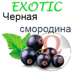 Ароматизатор Exotic - Черная смородина